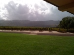 Sun and rain in Oakville, CA looking at the RObert Mondavi Tokalon Vineyard